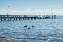 JuliePowell_Wellington Point-3