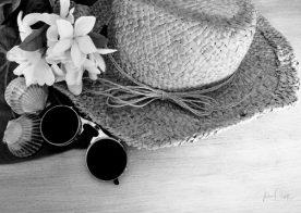 JuliePowell_Tastes of Summer