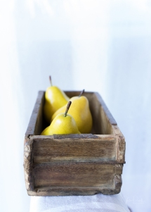 Powell-Julie_Pears-11