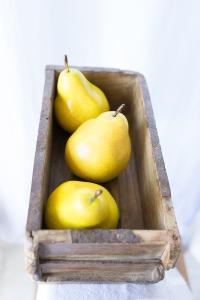 Powell-Julie_Pears-17