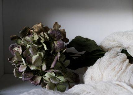 Powell-Julie_Hydrangea-11