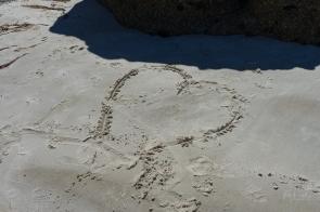 Powell-Julie_Squeaky Beach-11