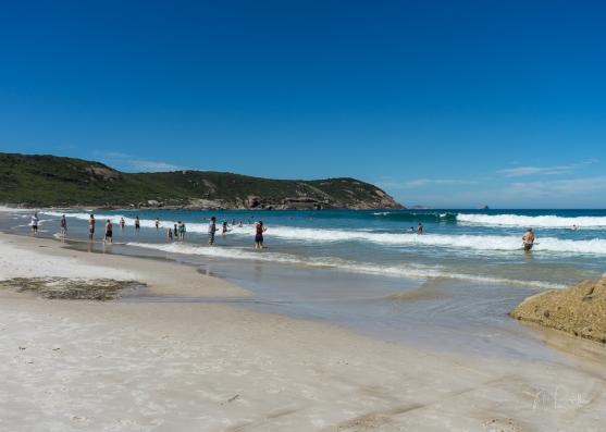 Powell-Julie_Squeaky Beach-12