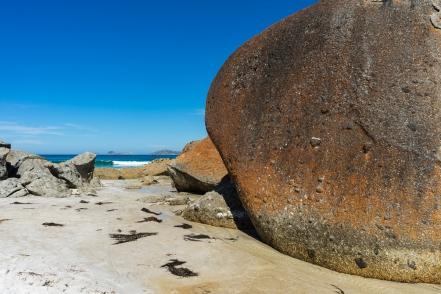 Powell-Julie_Squeaky Beach-16