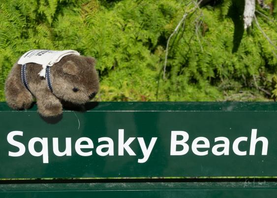 Powell-Julie_Squeaky Beach