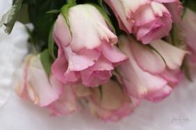 Powell-Julie_Vintage Pink-14