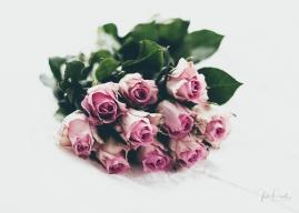 Powell-Julie_Vintage Pink-3