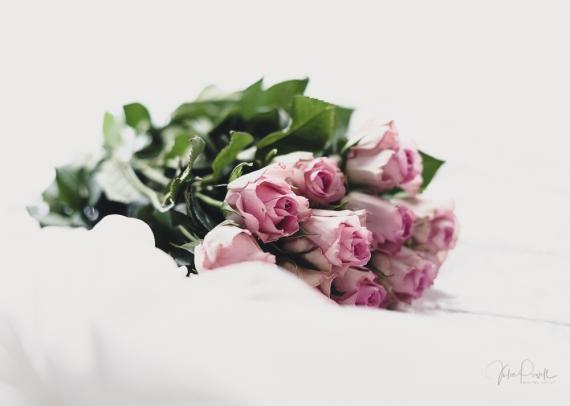 Powell-Julie_Vintage Pink-9