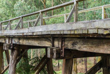 Powell-Julie_Noojee Trestle Bridge-10