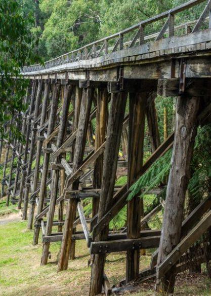 Powell-Julie_Noojee Trestle Bridge-11
