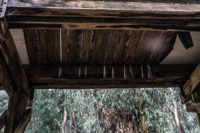 Powell-Julie_Noojee Trestle Bridge-13