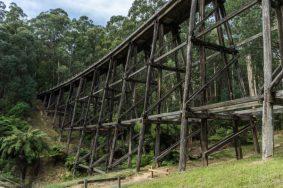 Powell-Julie_Noojee Trestle Bridge-15