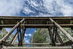 Powell-Julie_Noojee Trestle Bridge-16