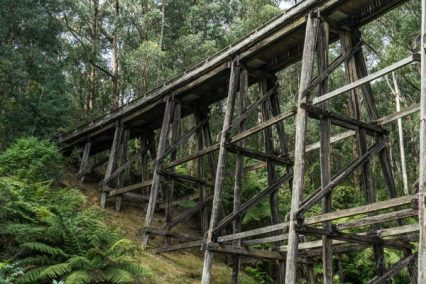 Powell-Julie_Noojee Trestle Bridge-18