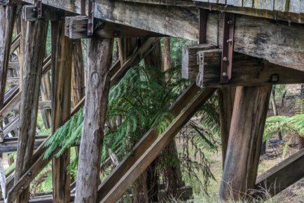 Powell-Julie_Noojee Trestle Bridge-9