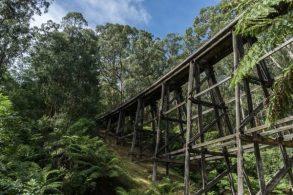 Powell-Julie_Noojee Trestle Bridge