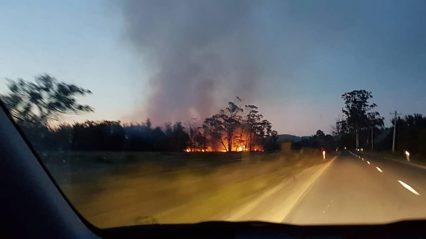 Bushfire near Bicheno