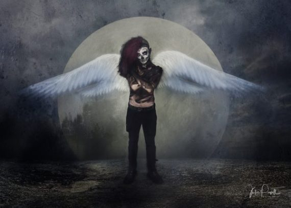 Julie Powell_On Night Wings