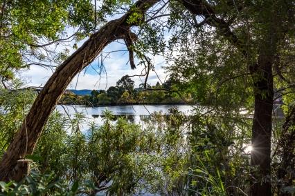 JuliePowell_Derwent River-21