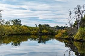 JuliePowell_Derwent River-6