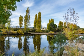 JuliePowell_Derwent River-7