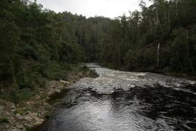 JuliePowell_Franklin River-3