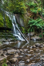 JuliePowell_Lilydale Falls-4