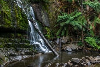 JuliePowell_Lilydale Falls-5