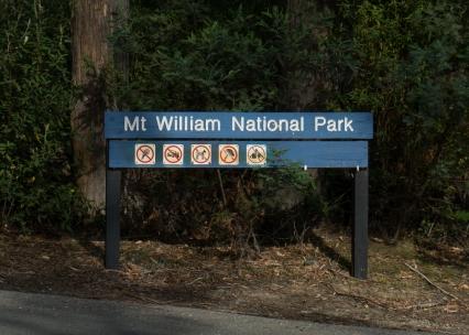 Mt William National Park