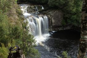 Pine Forest Falls