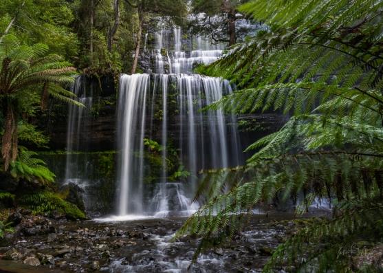 Russell Falls, Mount Field NP