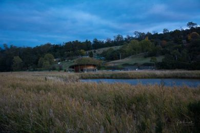 JuliePowell_Tamar Valley Wetlands-19