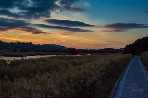 JuliePowell_Tamar Valley Wetlands-20