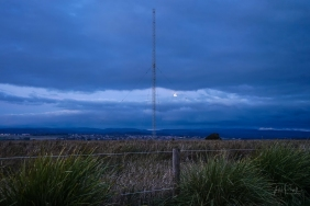 JuliePowell_Tamar Valley Wetlands-25