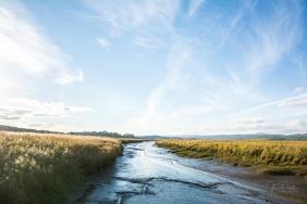 JuliePowell_Tamar Valley Wetlands-5
