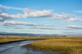 JuliePowell_Tamar Valley Wetlands-6