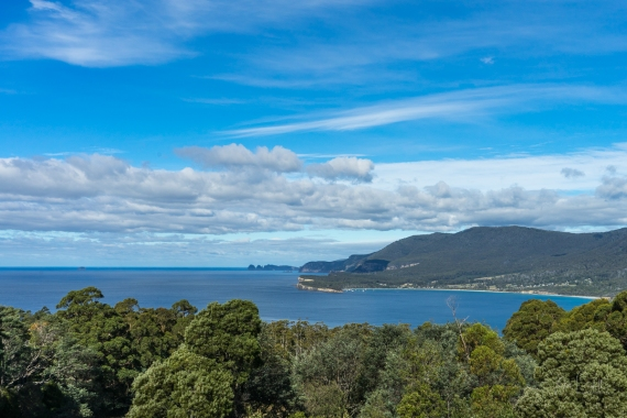 Tasman Lookout