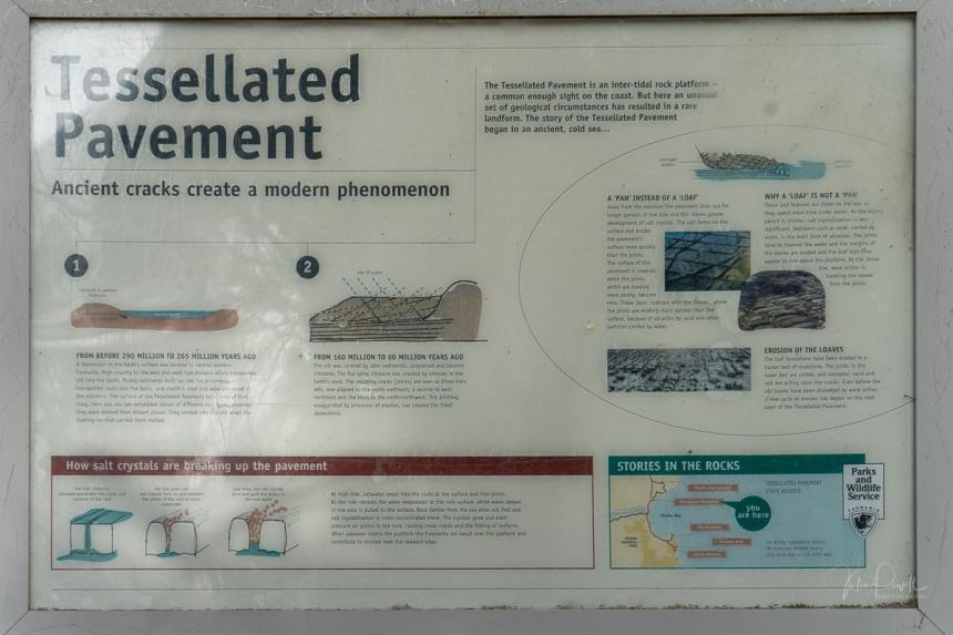 JuliePowell_Tesselated Pavement-32