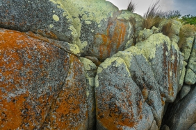 The Gardens, Bay of Fires