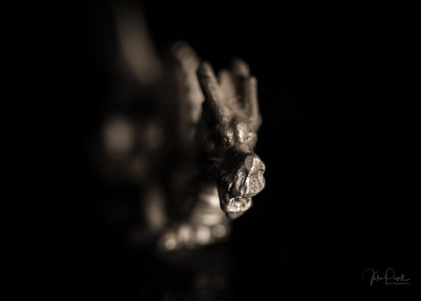 JuliePowell_Dragons-10