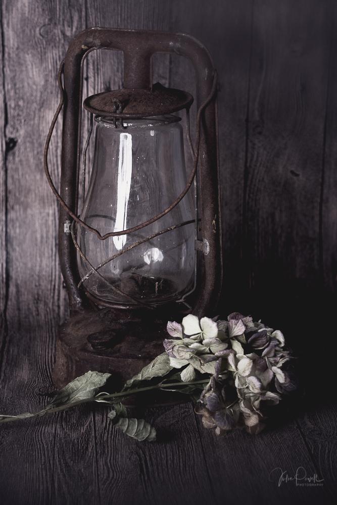 JuliePowell_Hydrangea & Lamp-6