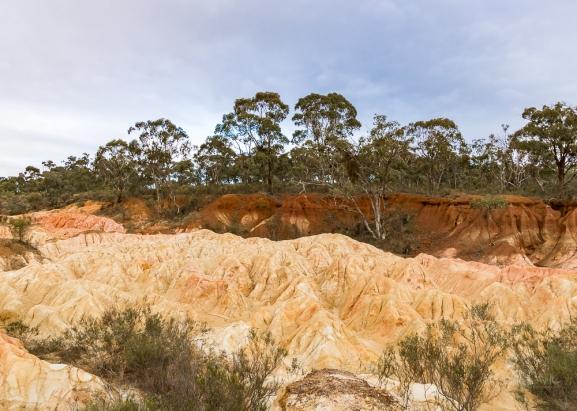 JuliePowell_Pink Cliffs-23