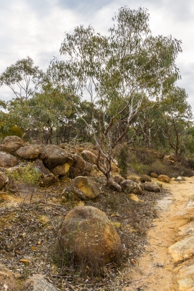 JuliePowell_Pink Cliffs-24