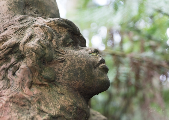 JuliePowell_William Ricketts Sanctuary-10
