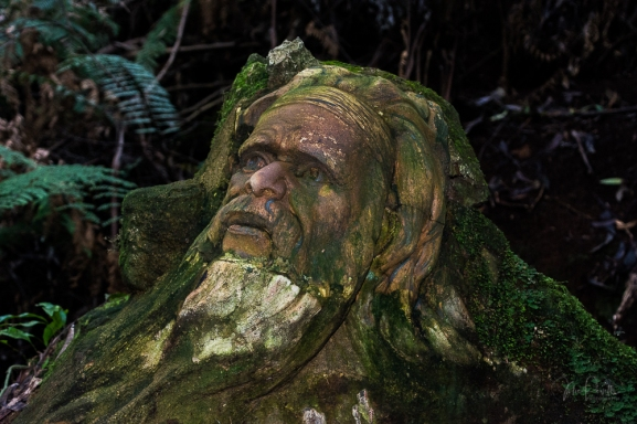 JuliePowell_William Ricketts Sanctuary-12