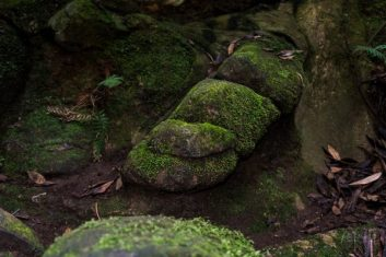 JuliePowell_William Ricketts Sanctuary-23