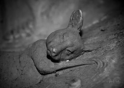 JuliePowell_William Ricketts Sanctuary-39