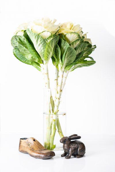 JuliePowell_Cabbage Rose_Light-13