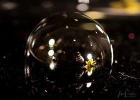 JuliePowell_Bubbles-1
