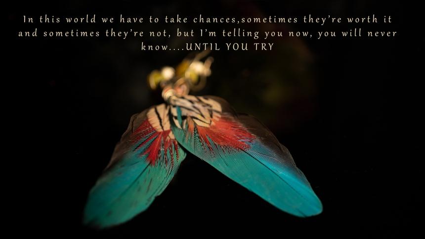 JuliePowell_Chances-1